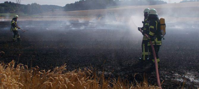 Flächenbrand bei Guggenhausen