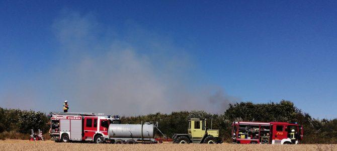 Feuerwehren löschen großen Flächenbrand