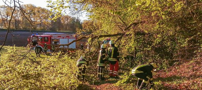 Ausgelöste Brandmeldeanlage durch umgestürzte Bäume